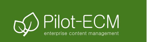 Pilot-ECM купить в SoftMap